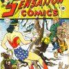 Sensation Comics Volume One issue 14