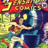 Sensation Comics Volume One issue 19