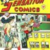 Sensation Comics Volume One Issue 24