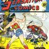 Sensation Comics Volume One Issue 28