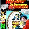 Wonder Woman Volume One Issue 221